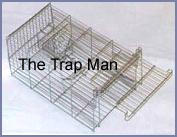 The Trap Man Family 14 inch Rat trap  set with door open