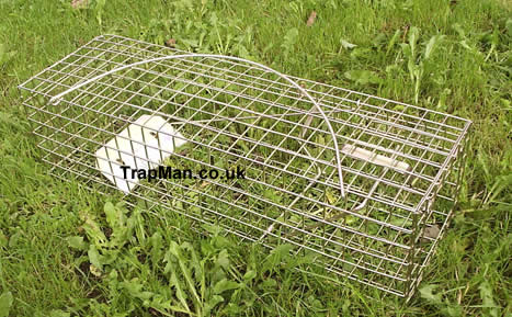 Pack of nine Trap Man grey squirrel traps �9.99 +del & vat, equivalent to �.55 each