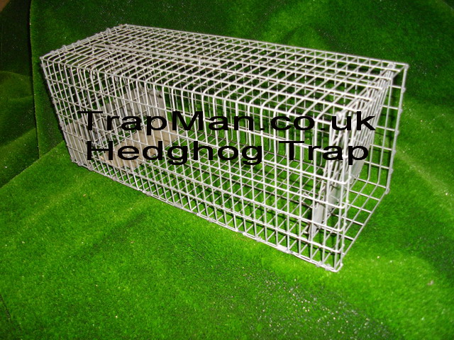 hedghog trap | live catch wire hedgehog trap