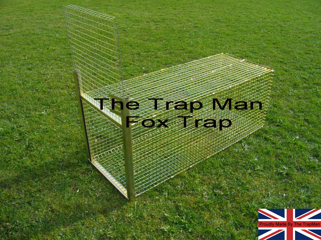 new fox trap in set position