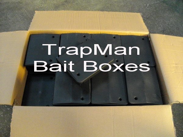 ten rat bait boxes, ten rat bait stations