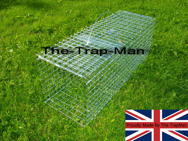 wood pigeon trap in the set position