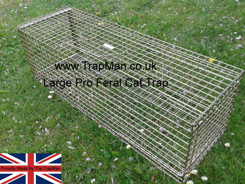 New Large Professional Feral Cat Trap with rear door, Made in England by The TrapMan