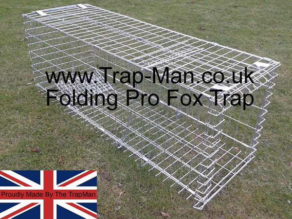 Fox traps made by The TrapMan humane and effective, thousands sold