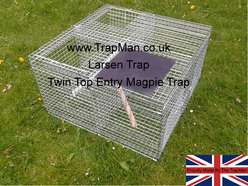 Larsen traps, magpie traps, crow traps made in England by The TrapMan & approved for use in England, Wales and Scotland with a trap tag